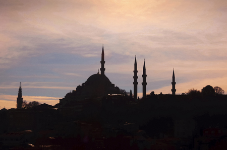 suleyman: Suleymaniye Mosque (Turkish: Suleymaniye Camii) Silhouettes Appearance. The S�leymaniye Mosque is an Ottoman imperial mosque located on the Third Hill of Istanbul, Turkey. It is the largest mosque in the city, and one of the best known sights of Istanbul.