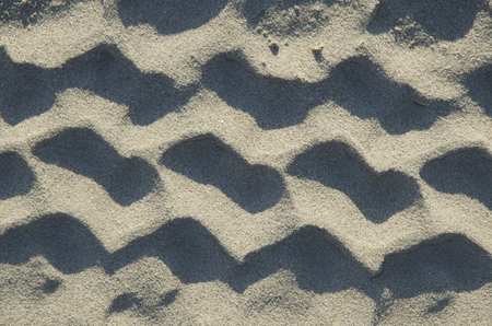 sandy brown: Coast beach sand surface, car wheel track on the sand in the natural environment. Background.