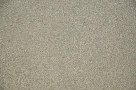 sandy brown: Coast beach sand surface, background.