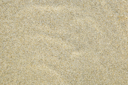 sandy brown: Coast beach, moving water and sand surface, background.