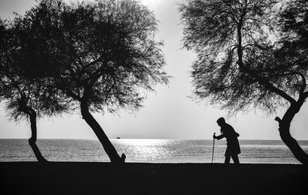 doubled: Old woman who walks on the beach walking stick between old trees Stock Photo