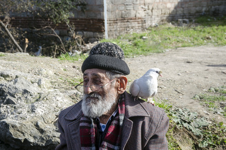 bespectacled: Istanbul, Turkey - January 25, 2015: White Bearded Grandfather and Pigeons friendly. Istanbul Topkapi bird markets, bird seller grandfather, was seen with pigeon on shoulder.