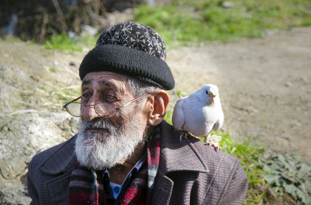 Istanbul, Turkey - January 25, 2015: White Bearded Grandfather and Pigeons friendly. Istanbul Topkapi bird markets, bird seller grandfather, was seen with pigeon on shoulder.