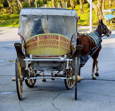 Phaeton, Pferdekutschen. Das Symbol des Pferdetransport ist das Transportfahrzeug Phaetons. Standard-Bild - 68348025