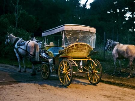 Phaeton, Pferdekutschen. Das Symbol des Pferdetransport ist das Transportfahrzeug Phaetons. Standard-Bild - 68348026