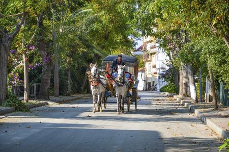 Istanbul, Turkey - October 30, 2016: Phaeton Buyukada. Horse carriage. The symbol of the Islands is the transportation vehicle phaetons. Adalar in Marmara Sea near Istanbul in Buyukada (meaning Big Island in Turkish). This is a neighborhood in the Istanbu
