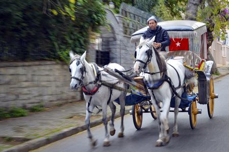 princes street: Istanbul, Turkey - October 30, 2016: In the fall Buyukada Phaeton. Horse Carriage.  The symbol of the Islands is the transportation vehicle phaetons. Adalar in Marmara Sea near Istanbul in Buyukada (meaning Big Island in Turkish). This is a neighborhood i