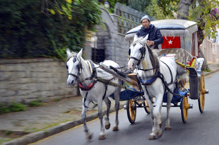 Istanbul, Turkey - October 30, 2016: In the fall Buyukada Phaeton. Horse Carriage.  The symbol of the Islands is the transportation vehicle phaetons. Adalar in Marmara Sea near Istanbul in Buyukada (meaning Big Island in Turkish). This is a neighborhood i
