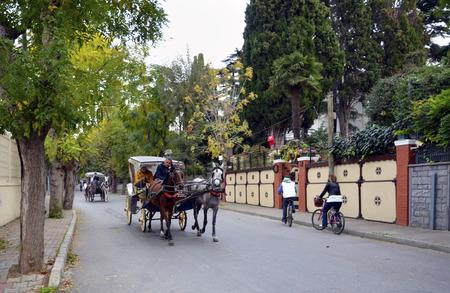 magnificence: Istanbul, Turkey - October 30, 2016: In the fall Buyukada Phaeton. Horse Carriage.  The symbol of the Islands is the transportation vehicle phaetons. Adalar in Marmara Sea near Istanbul in Buyukada (meaning Big Island in Turkish). This is a neighborhood i