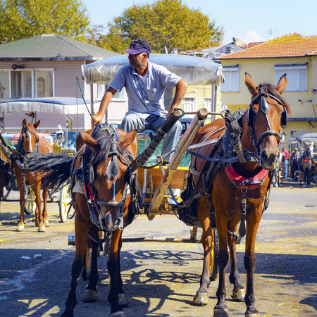 motor de carro: Istanbul, Turkey - September 29, 2013: Phaeton Horse Passenger waiting area. Coachman Horse Carriage Ride. Buyukada, Princes Islands, also known as Istanbul is the largest of the islands off the coast. Buyukada motor vehicle is not being used, such as Pha Editorial