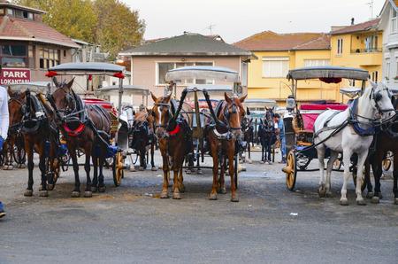 motor de carro: Estambul, Turquía - 29 septiembre, 2013: Pasajeros Phaeton caballo sala de espera. Cochero de caballos del paseo del carro. Buyukada, las Islas Príncipe, también conocida como Estambul es la mayor de las islas de la costa. vehículo de motor Buyukada no está siendo utilizado, como Pha Editorial