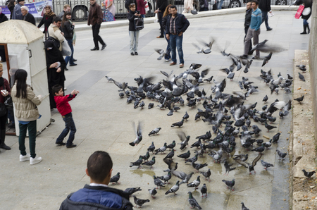 Istanbul, Turkey - March 29, 2013: New Mosque (Yeni Cami) People and pigeons around the courtyard. It is situated on the Golden Horn, at the southern end of the Galata Bridge, and is one of the famous architectural landmarks of Istanbul. Editöryel