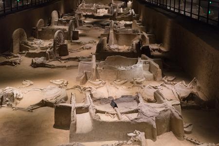 Luoyang Zhouwangcheng Emperor Six Horses Carriage Museum 報道画像