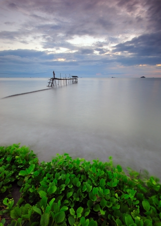 wheather: Wooden Jetty On The Sea