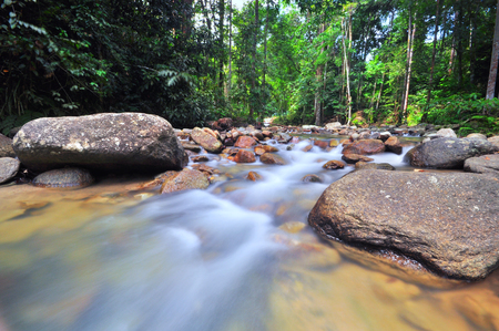 Beautiful water stream at rain forest of Malaysia