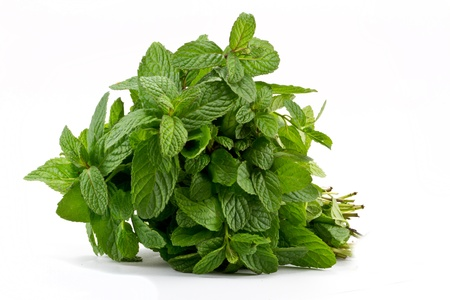 Fresh mint leaves Stock Photo - 8578271