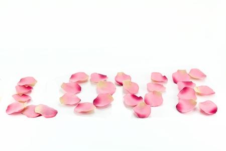'love' written with flower petals Stock Photo - 8667289