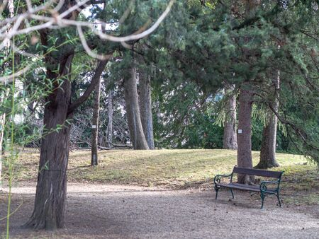 This is the park of Vienna.