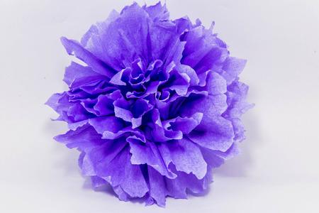 paper flower pom-poms