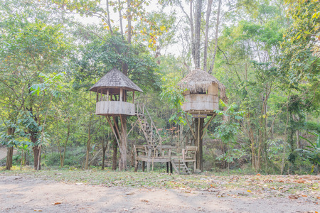 midst: tree houses  in the midst of national park Stock Photo