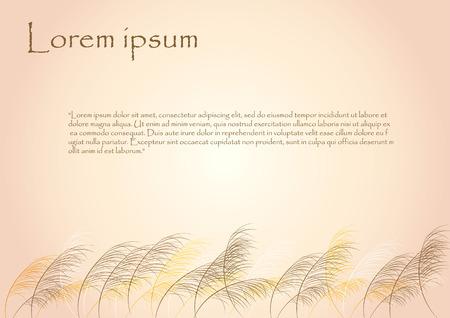 grasslands: grass flower background with sample text