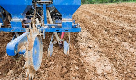 siembra: la siembra de semillas de maíz makchine caer en el pozo en la tierra