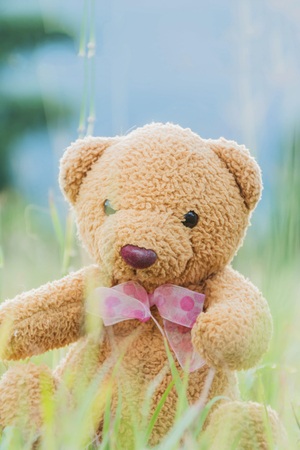 sitting on the ground: Teddy bear sitting on green grass ground use water color effect Stock Photo