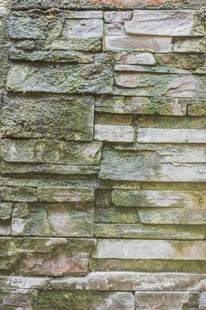 lichen: lichen bricks wall