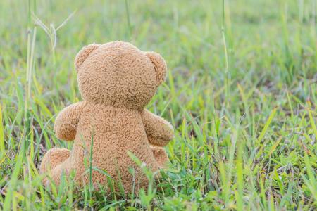 sitting on the ground: Teddy bear sitting on green grass ground Stock Photo