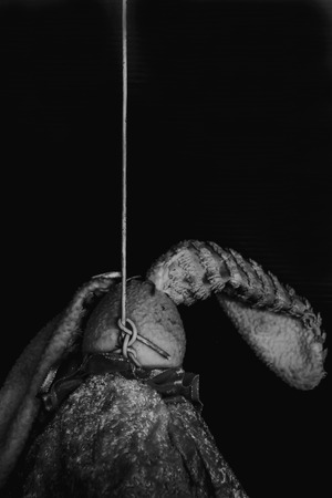 murdered: horror hanged doll, murdered on black background in white tone with shadow edge
