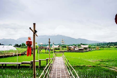 View of rice fields and mountains and hut in Wat Phuket Reklamní fotografie