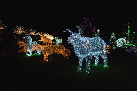 Many kind of animal shape lighting decorated in Christmas Festival at Park of Local Temple
