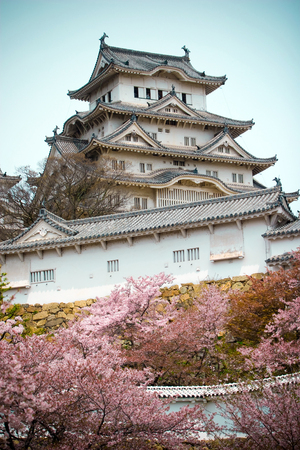 Himeji Castle with the cherry blossoms (sakura) trees in below. This is the largest and most visited castle in Japan, one of the first UNESCO World Heritage Sites in the country.