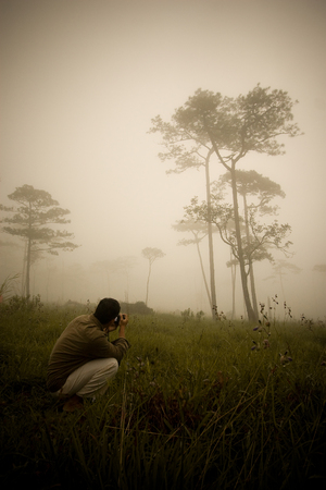 sitting on the ground: A man taking a photo of forest in the morning with the fog Stock Photo