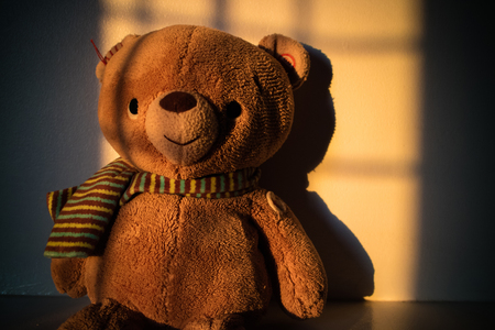 Teddy bear doll sitting beside the window with sunset light. Copy space.