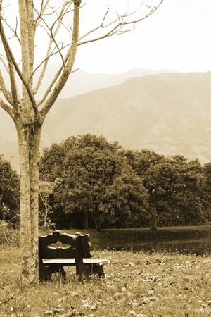 landscape with bench Stock Photo - 5879194