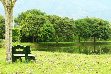 beauty landscape with lake, mountain and green bench Stock Photo - 5879236