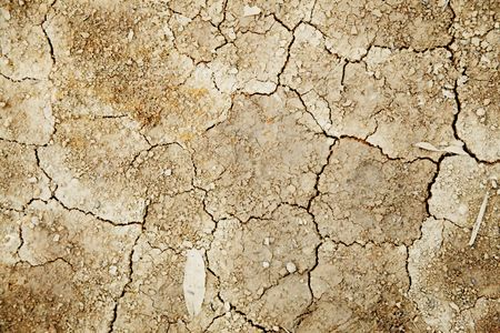 Texture of dry and infertile land. Abstract background photo
