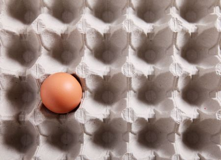 Close-up of a single egg in a packing photo