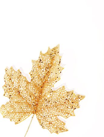 gold leaf: Gold leaf over white background, isolated object