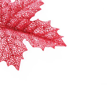 red leaf over white background. Space to insert text or design
