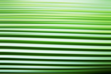 Green leaf texture with lines. Abstract surface Stock Photo - 6231345