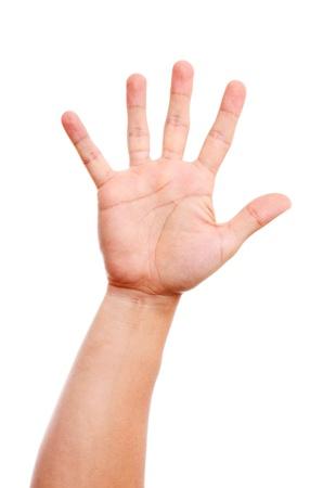 partes del cuerpo humano: Hombre de mano abierta sobre fondo blanco.