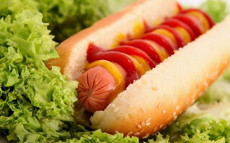 hot dog with sausage,bread,mustard and ketchup over lettuce background  photo