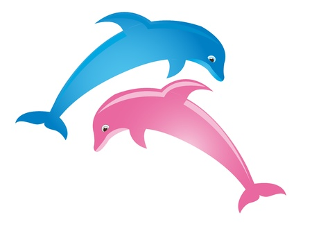 splash pool: pink and blue dolphin isolated over white background. vector Illustration