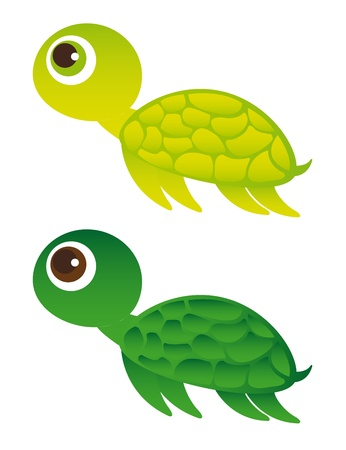 turtle cartoon isolated over white background. vector Vector