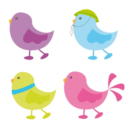 cute birds over white background. vector illustration Vector
