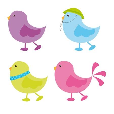 cute birds over white background. vector illustration Vector