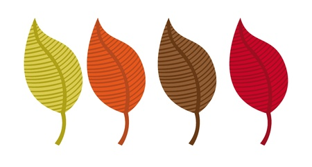 leaves autumn isolated over white background. vector Stock Vector - 11516503