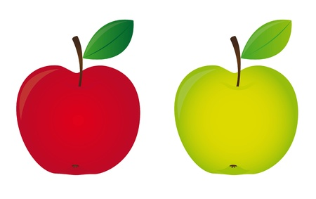 green apple isolated: red and green apple isolated over white background. vector